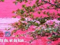 Du kan bruge Dit Vesterbro til mange ting….