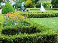 Pluk en gratis buket sommerblomster i haveanlægget bag Ny Carlsberg Glyptotek